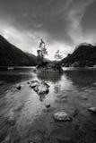 Piccola isola rocciosa con l'albero sul nea di Hintersee del lago Fotografia Stock Libera da Diritti