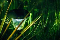 Piccola luce solare del giardino, lanterna nel letto di fiore Immagini Stock