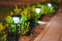 Piccola luce solare del giardino, lanterna nel letto di fiore Disegno del giardino Fotografia Stock