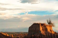 Piccola MESA del deserto Immagine Stock Libera da Diritti