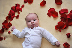 Piccola neonata fotografia stock libera da diritti
