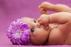 Piccola neonata afroamericana adorabile che guarda - peopl nero Immagini Stock