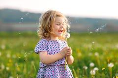 Piccola neonata sveglia adorabile che soffia su un fiore del dente di leone sulla natura di estate Bello sano felice fotografia stock