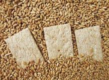 Piccola pagnotta (di pane) Immagine Stock