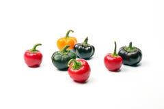 Piccola paprica del capsico del peperoncino rosso del peperone dolce Fotografie Stock Libere da Diritti