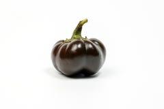 Piccola paprica del capsico del peperoncino rosso del peperone dolce Immagine Stock