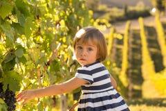 Piccola ragazza bionda in vestito a strisce che raggiunge per l'uva in un vin fotografia stock libera da diritti