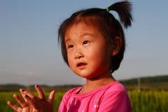 Piccola ragazza cinese sveglia Fotografie Stock
