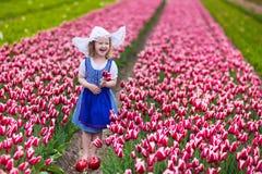 Piccola ragazza olandese nel campo del tulipano Immagine Stock
