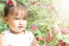 Piccola ragazza sveglia che cammina a piedi nudi nel giardino vicino alla mela t Fotografia Stock