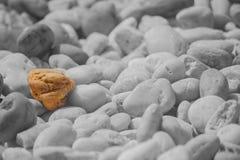 Piccola roccia marrone in massa di varie rocce per la decorazione del giardino con fondo in bianco e nero Fotografia Stock