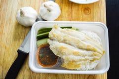 Piccola scatola del pesce Fotografia Stock