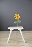 Piccola sedia di legno bianca con il fiore che sta sul pavimento Fotografia Stock