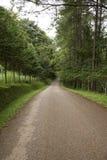 Piccola strada in campagna Fotografie Stock