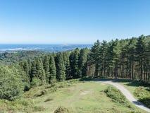 Piccola strada che entra in foresta con una vista sulla riva Immagine Stock