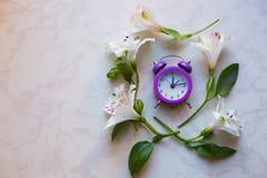 Piccola sveglia porpora circondata con i fiori di alstroemeria Fotografie Stock Libere da Diritti