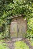 Piccola vecchia tettoia di legno principalmente coperta dall'edera e dalle foglie Immagini Stock