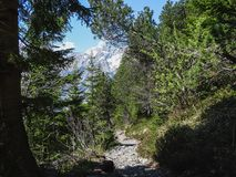 Piccole alpi svizzere d'escursione della depressione del percorso vicino a Oeschinensee in Kanders Fotografia Stock Libera da Diritti