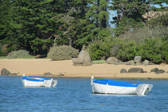Piccole barche in acqua Immagini Stock