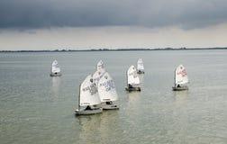 Piccole barche a vela alla baia di IJsselmeer netherlands fotografie stock