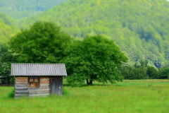 Piccole cabine nel campo Immagini Stock