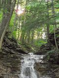Piccole cascate al parco di stato fotografia stock libera da diritti