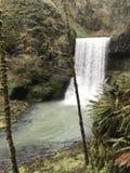 Piccole cascate al parco di stato dentro O fotografia stock