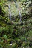 Piccole cascate a Caldeirao Verde Immagine Stock Libera da Diritti