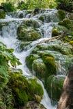 Piccole cascate con le rocce e muschio nei laghi parco nazionale, Croazia Plitvice fotografia stock