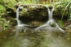 Piccole cascate gemellate Fotografie Stock