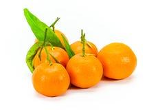 Piccole clementine corse Fotografie Stock Libere da Diritti