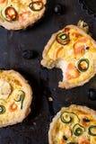 Piccole crostate di color salmone Fotografie Stock