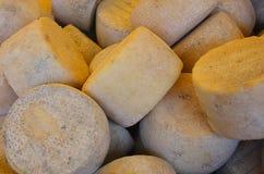 Piccole forme di formaggio Immagini Stock