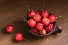 Piccole mele di granchio nella tazza Mele selvagge sparse intorno alla tazza Fotografie Stock Libere da Diritti