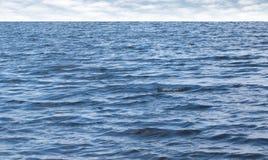 Piccole onde sull'acqua di mare blu pura con il cielo nuvoloso Fotografia Stock
