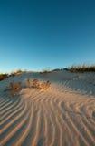 Piccole orme dell'uccello sulla duna Immagini Stock Libere da Diritti