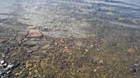 Piccole pietre al fondo del bacino idrico in un fiume basso con scorrimento dell'acqua video d archivio