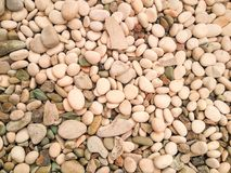 piccole pietre bianche e struttura grigia delle rocce Immagine Stock
