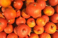 Piccole zucche arancio sulla vecchia Tabella di legno Autumn Harvest Organic Vegetables Background Immagine Stock