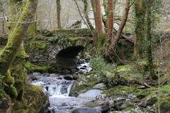 Piccoli cascata e ponte, immagini stock libere da diritti