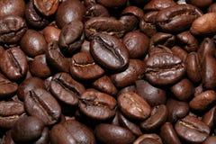 Piccoli chicchi di caffè Immagine Stock Libera da Diritti