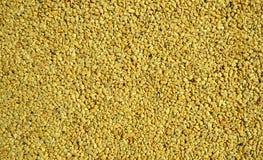 Piccoli ciottoli gialli fotografie stock libere da diritti