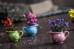 Piccoli fiori gialli, porpora e rossi artificiali in poco Flowe Immagine Stock