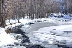 Piccoli fiume e legno di inverno Fotografia Stock