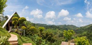 Piccoli montagne e paesaggio domestici del cielo blu immagine stock