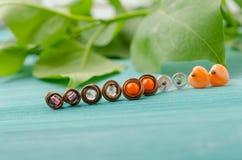 Piccoli orecchini del perno Filo di rame fatto a mano e gioielli delle perle fotografia stock libera da diritti