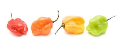 Piccoli peperoni molto caldi Fotografia Stock