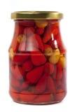 Piccoli peperoni in vaso Immagini Stock Libere da Diritti