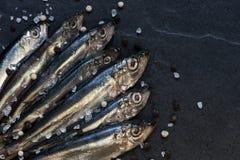 Piccoli pesci con sale e pepe sulla tavola Immagini Stock
