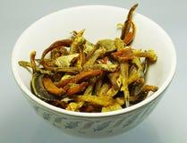 Piccoli pesci fritti Immagini Stock